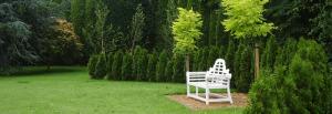Garden Design Planting Partners Services